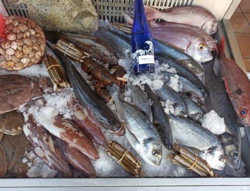Pescado fresco en Malaga